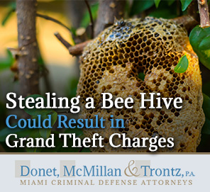 Picture of a Bee Hive in Florida, It's stealing could result in Grand Theft Charges