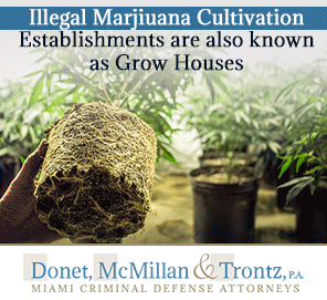 Picture of a Grow House in Miami. It's Owners Were in Need of Miami Drug Crime Lawyers
